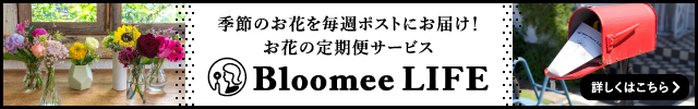 Bloomeelife 640 100 475d00e6b623c943cf0ddf30797c3941f8e0e55ac52cb7cb5c5a0be36d8a4641